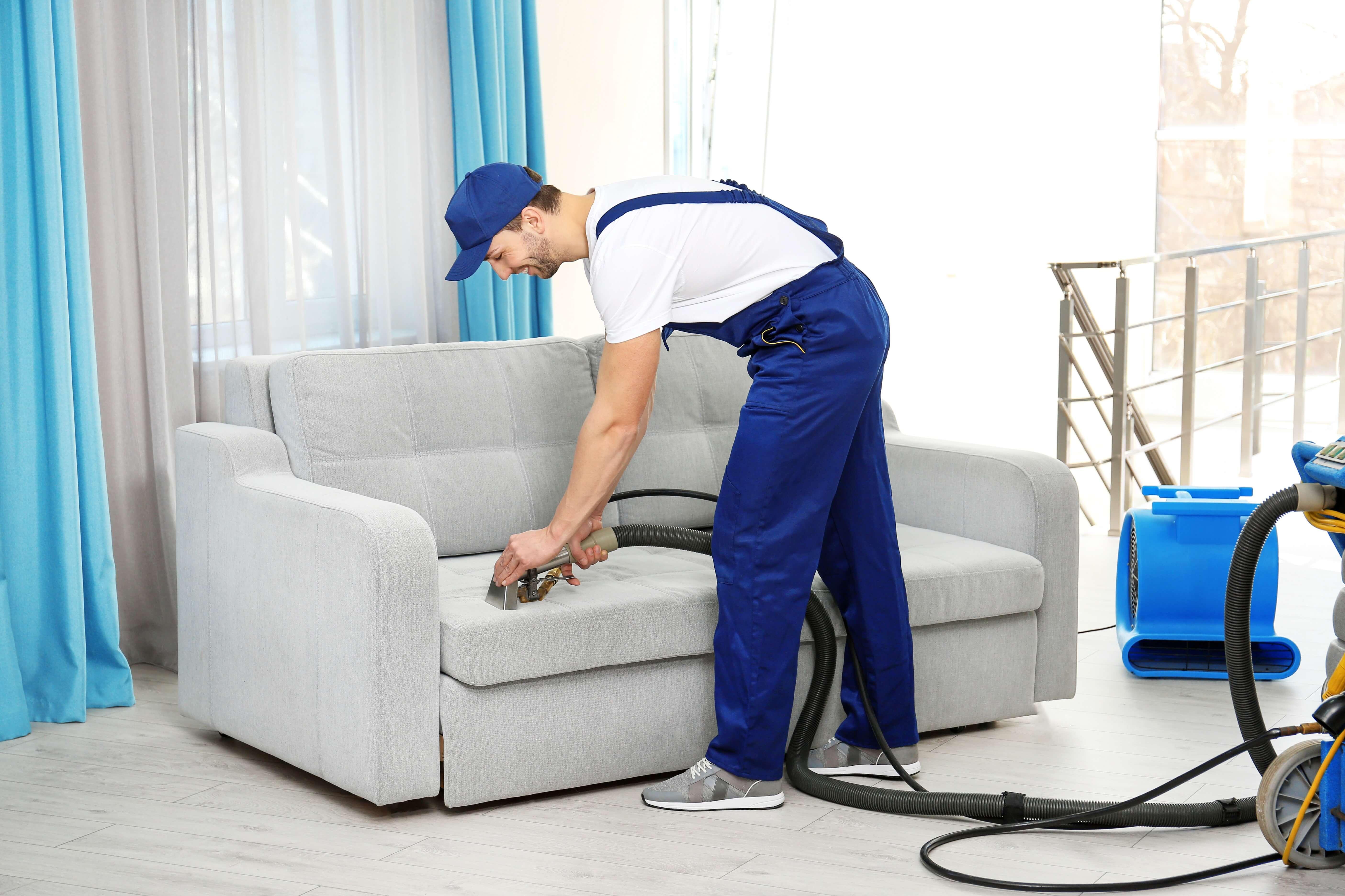 Химчистка мебели, виды, подходящие средства, пошаговый алгоритм